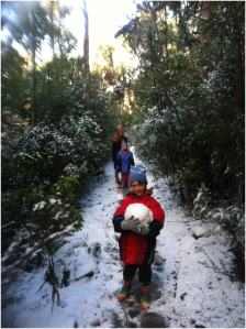 WorldMark South Pacific: Seven Mile Beach, snow in Tasmania
