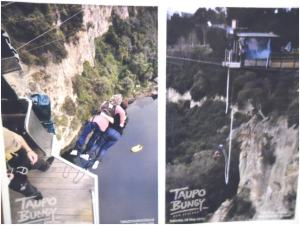 Bunjee jumping | WorldMark South Pacific Club by Wyndham