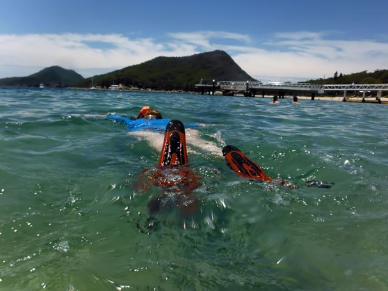 Snorkelling at Shoal Bay - WorldMark South Pacific Club by Wyndham timeshare