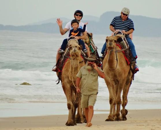 Camel riding at Flynns Beach, Port Macquarie NSW