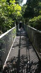 Daintree National Park, Port Douglas QLD
