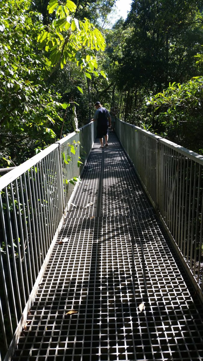 Daintree National Park, Port Douglas QLD